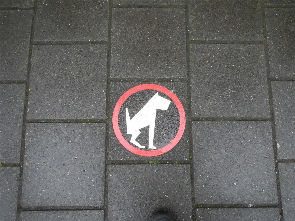 Kein Hundepoep auf der Straße!