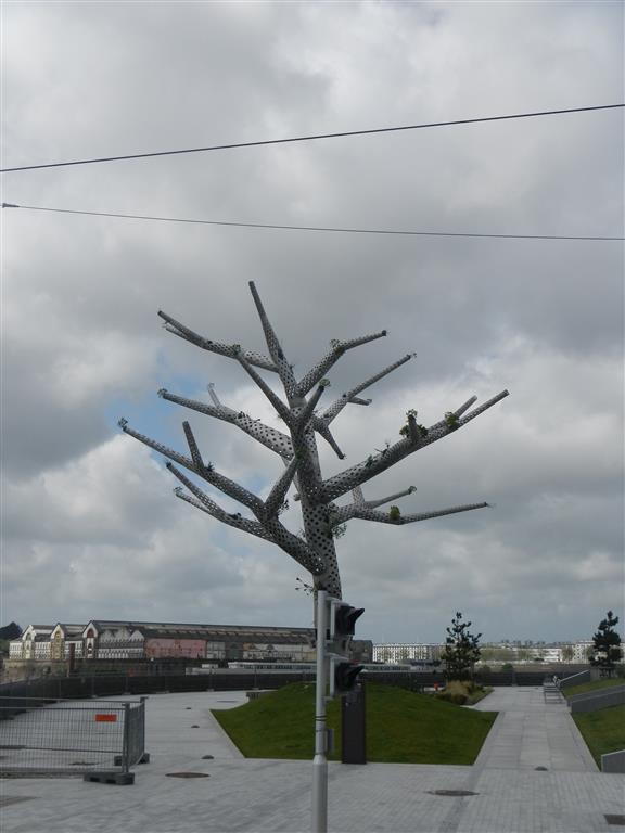 Lustige Bäume in Brest