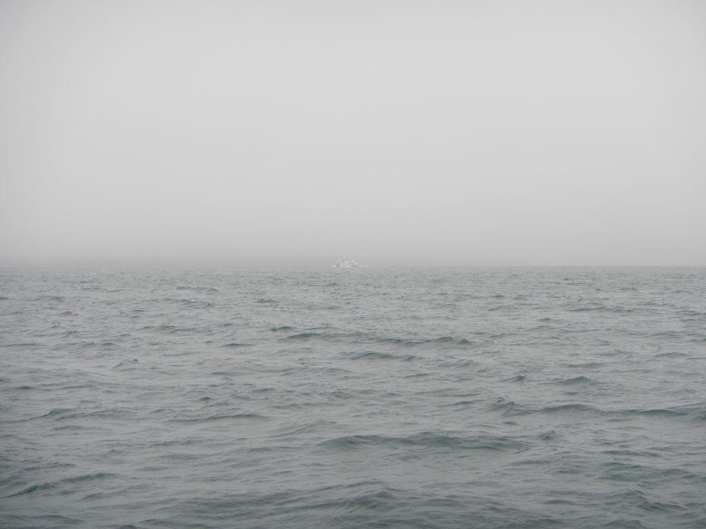 Nebel unterwegs