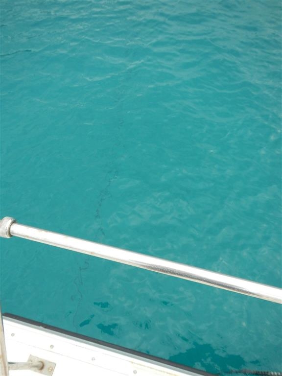 Unsere Ankerkette auf 7 m Wassertiefe.
