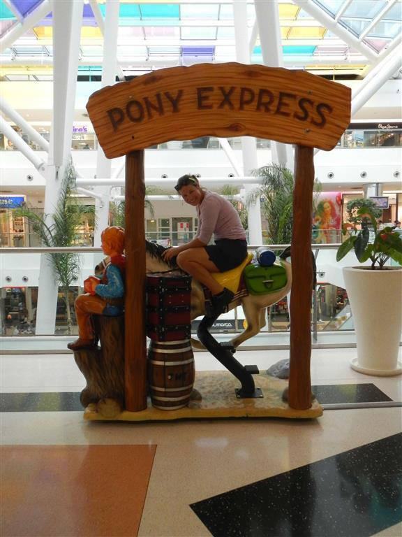 In Funchal konnte man auch Pony reiten!