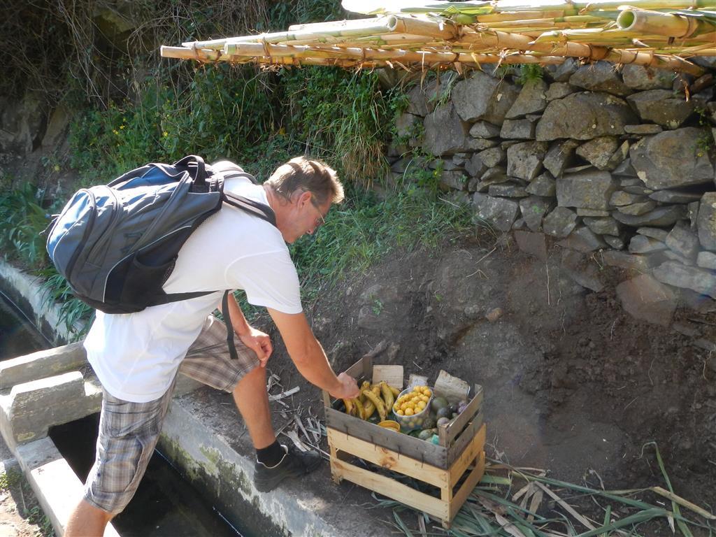 Hier konnte man für 0,50 € 3 frische, reife Bananen kaufen.