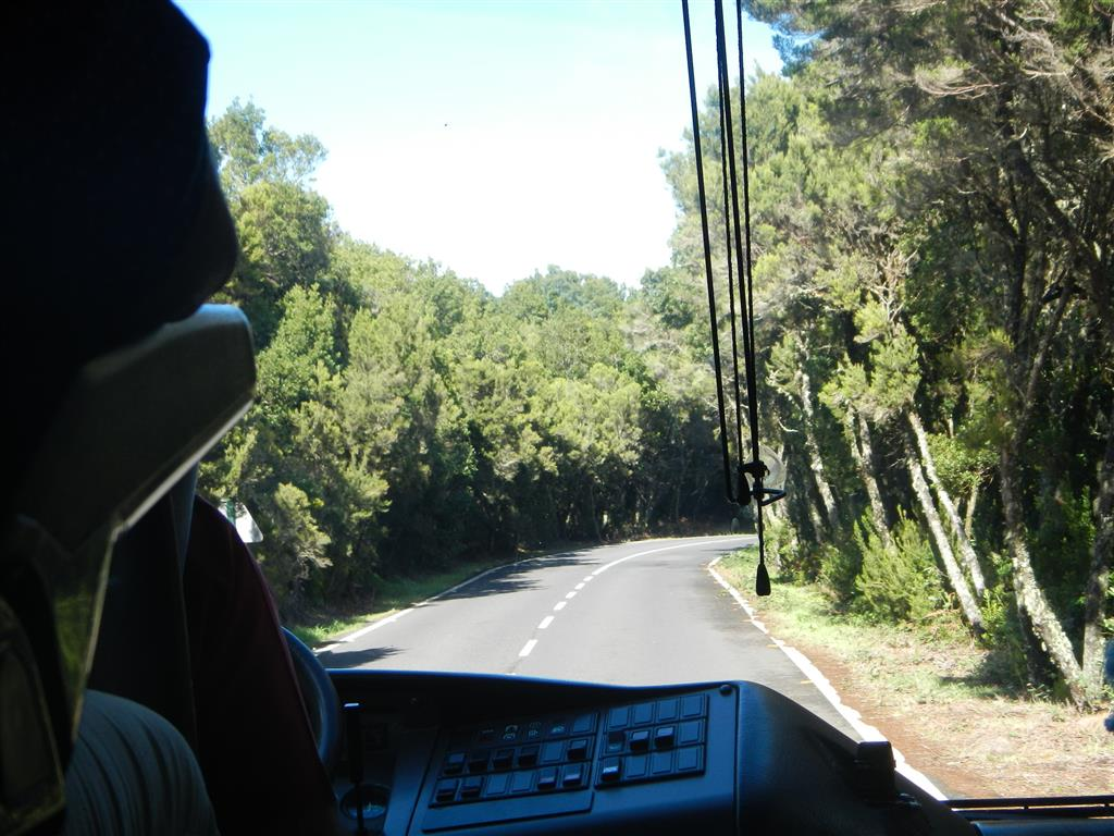 Impressionen von unseren Busfahrten über die Insel.