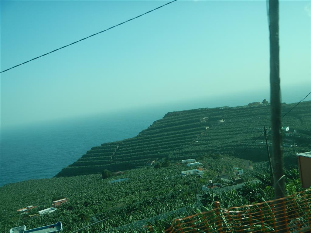 Diese Seite der Insel ist reich an Bananenplantagen.