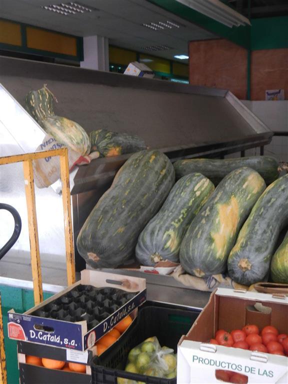 Hier noch einen Nachtrag von unserem Ausflug zum Obst- und Gemüsemarkt. Dort haben wir diese riesigen Kürbisse entdeckt.