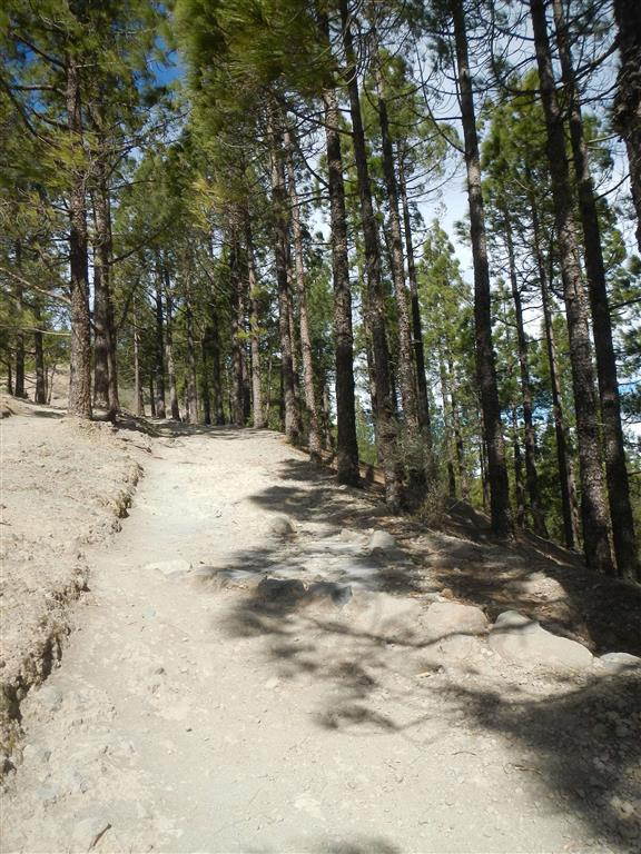Dieser Weg führt auf den Roque Nublo