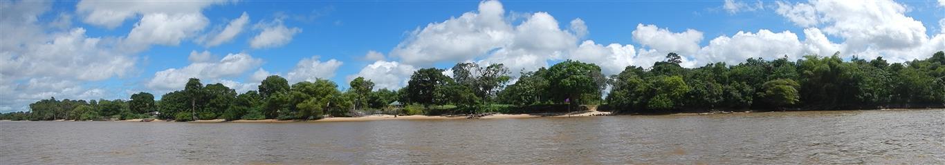 Blick auf das Ufer von Suriname