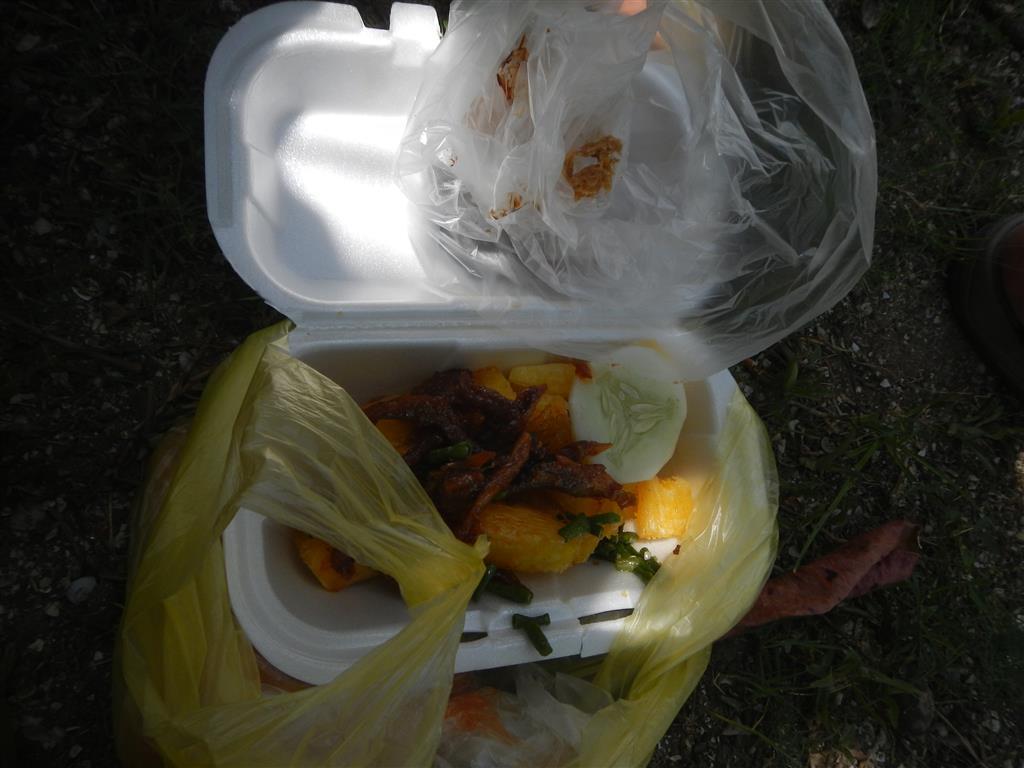 Hier noch ein Nachzügler-Foto vom javanesischen Markt. Anstatt Kartoffeln werden hier einfach Maniokstücke frittiert, diese sind sehr stärkehaltend und sattmachend, allerdings auch etwas geschmacklos, deswegen bekommt man getrocknete kleine Fische, die nach dem Trocknen in einer scharfen, salzigen Soße gewälzt werden dazu