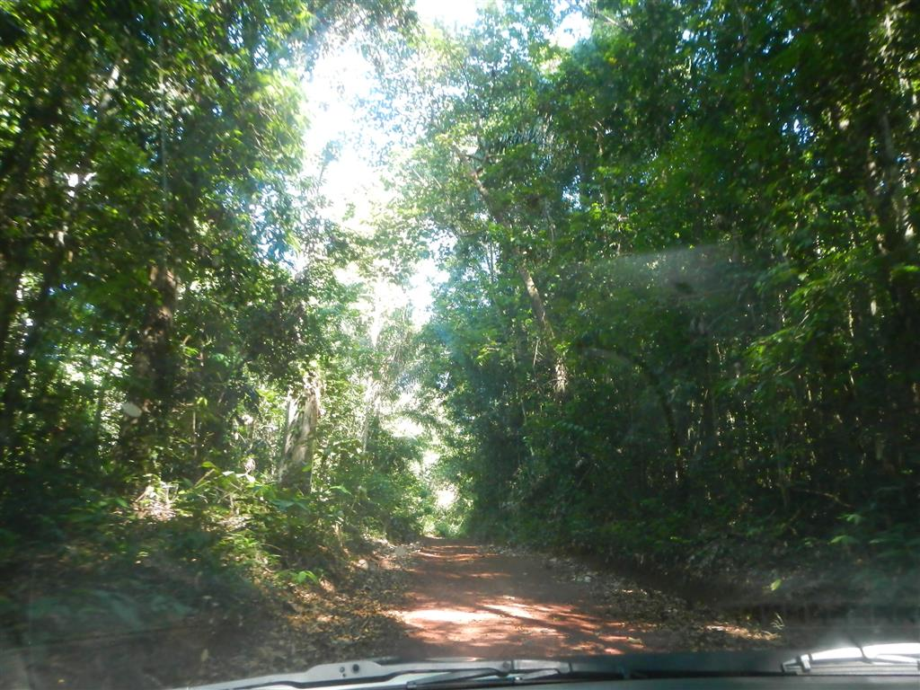 Auf dem Weg zum Brownsberg
