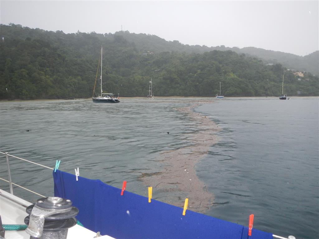 nach dem Regenschauer hat es viele Sachen von den bergen ins Meer gespült