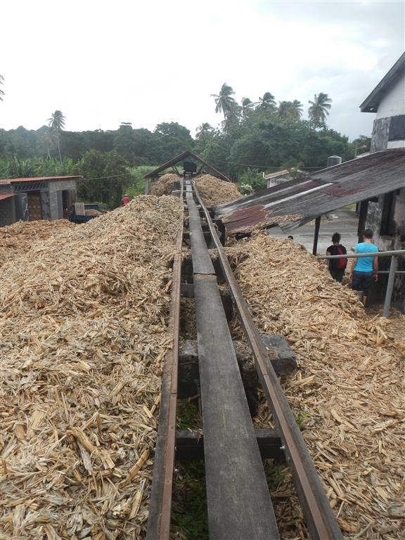 Wenn das Zuckerrohr ausgepresst ist, bleibt ganz schön was übrig und wird zum Heizen wieder verwendet.