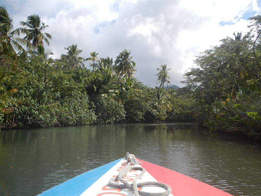 Fahrt im Indian River