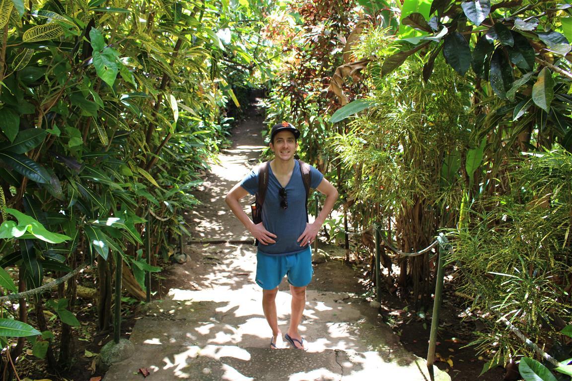 Durch den Dschungel zum Wasserfall