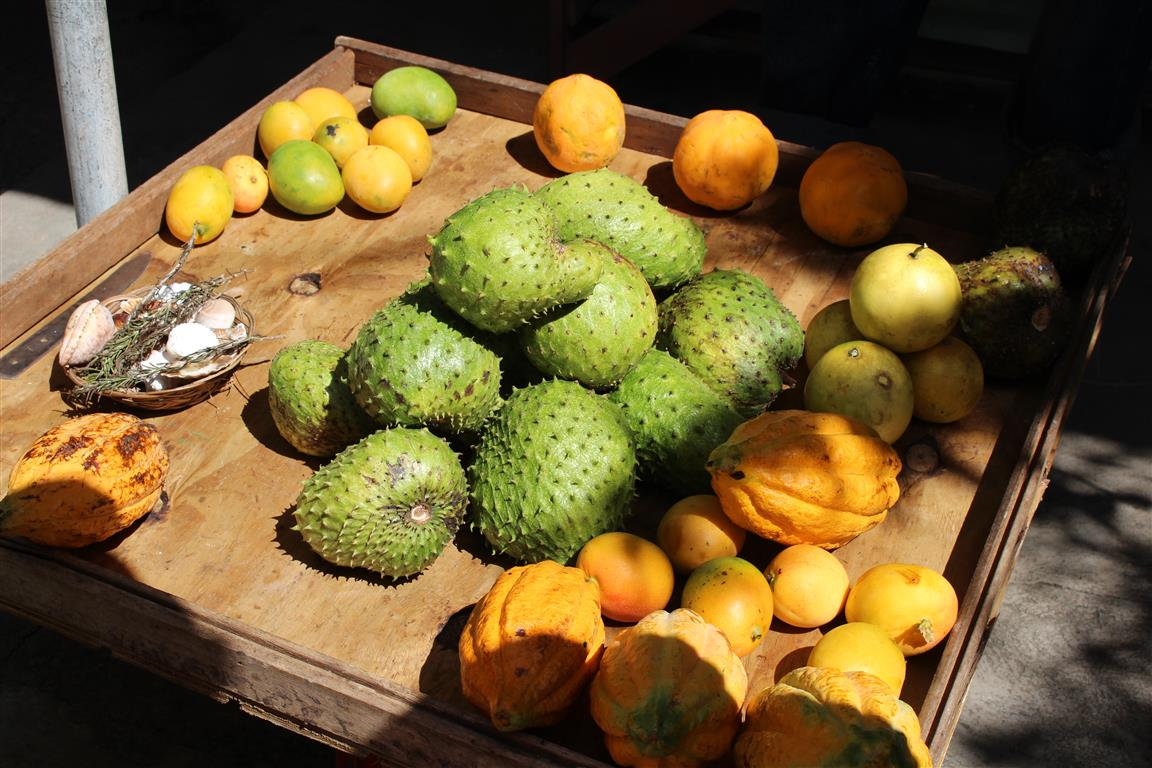 Exotische Früchte, in der Mitte Annona, im Vordergrund Kakaofrüchte und Mangos