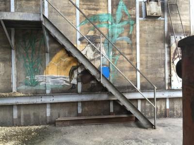 Wie überall auf Guadeloupe zu finden, sind auch die Wände in der Rumdestillerie verschönert