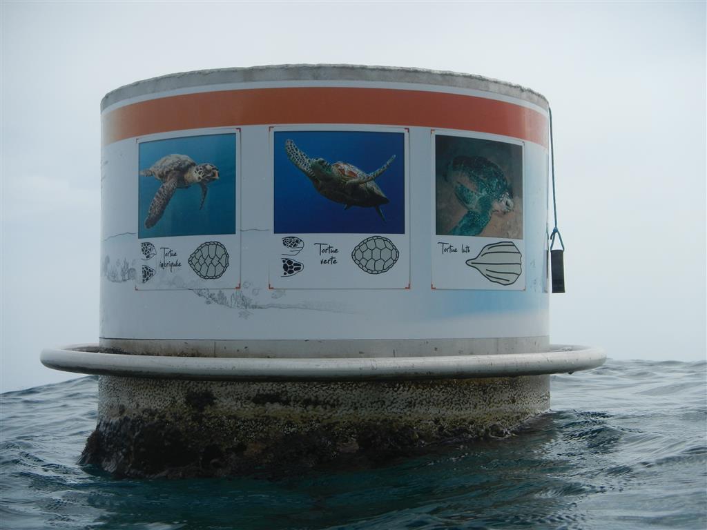 Die Tonnen zeigen uns die Unterwasserwelt auf Fotos