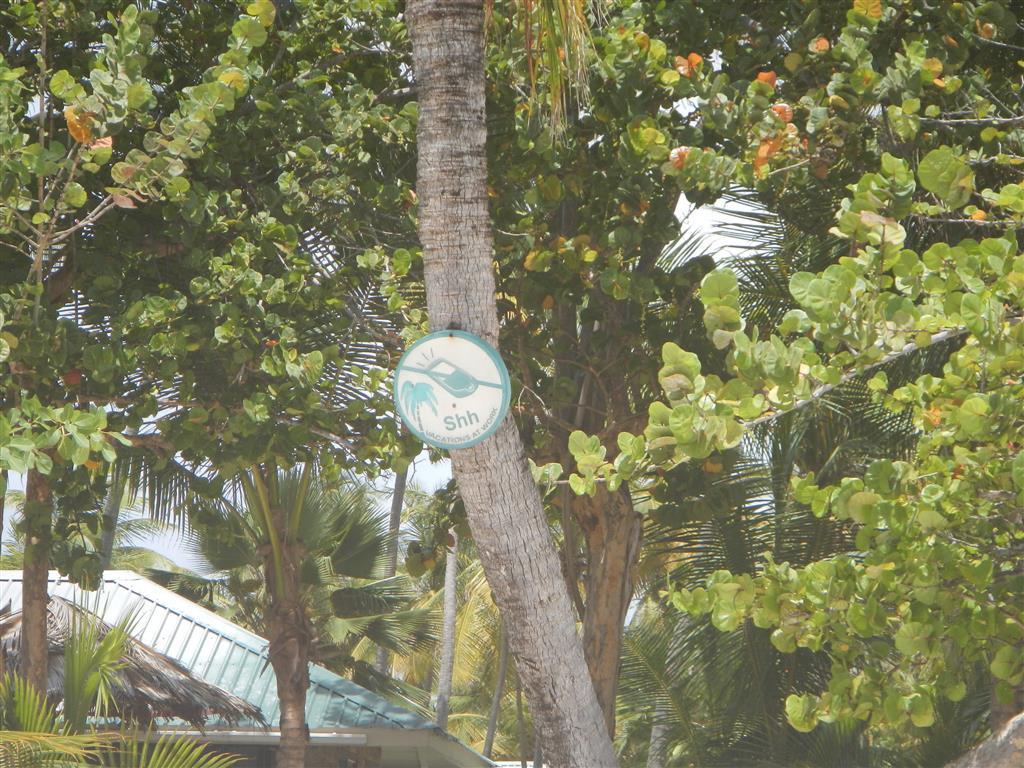 Bitte Ruhe am Strand von Palm Island!