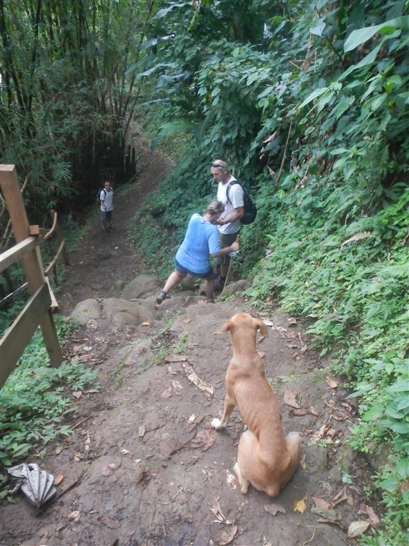 Schöne Wanderung zum Wasserfall. Der Hund hat uns auf dem ganzen Weg begleitet und hat immer auf uns gewartet