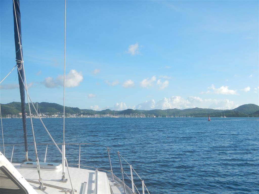 Einfahrt nach Le Marin. So viele Masten!