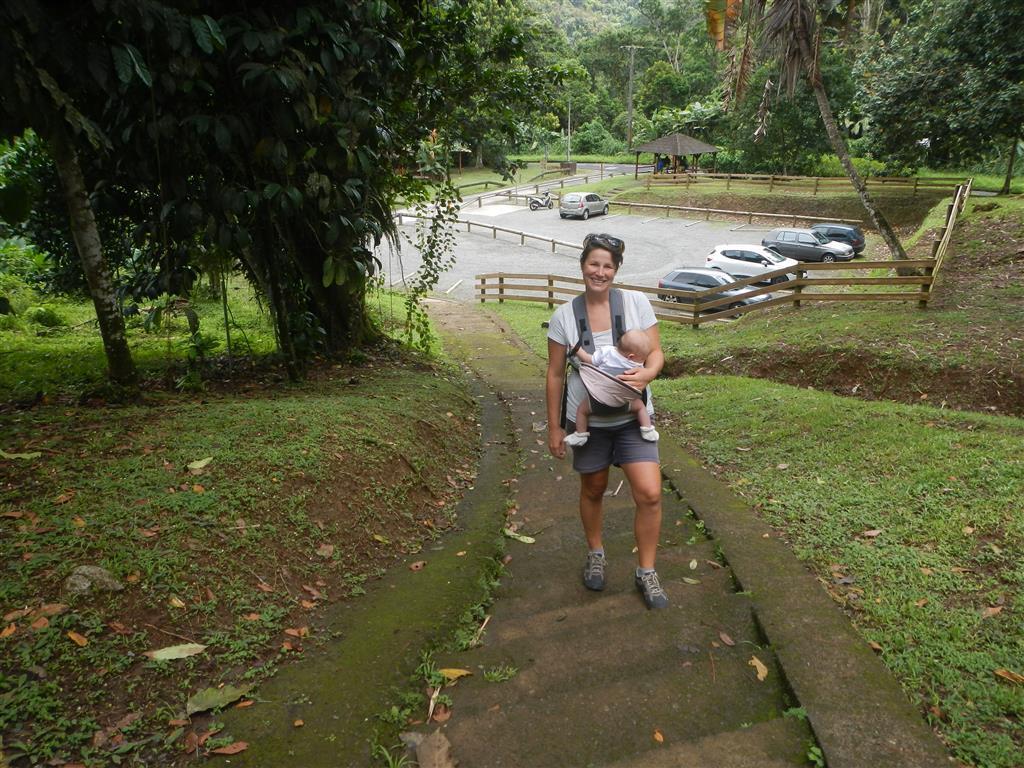 Wir machen eine kleine Wanderung in den Dschungel.