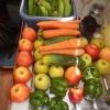 Obst- und Gemüseeinkäufe für den zweiten Teil der Atlantiküberquerung